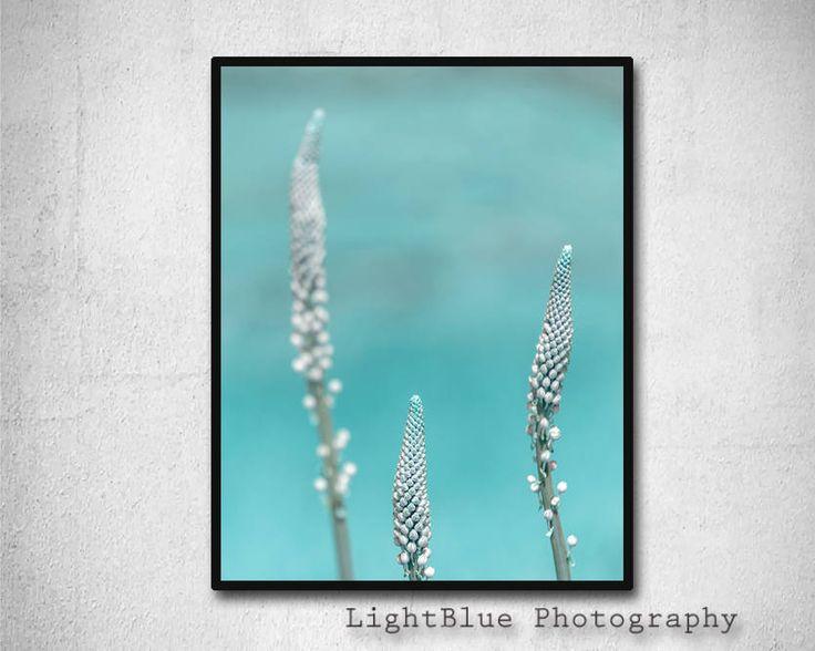 Nature Print Printable Nature Botanical Art Print Teal Flower Photography Digital Print Printable art Modern Art Teal Aqua Blue decor by LightBluePhotography on Etsy