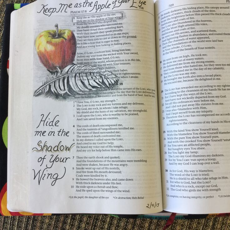 Psalm 17:8 in journaling Bible