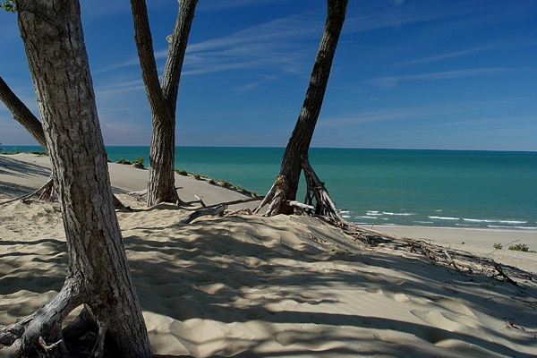 Indiana Dunes...the Midwest doesn't have an ocean, but it has Lake Michigan.