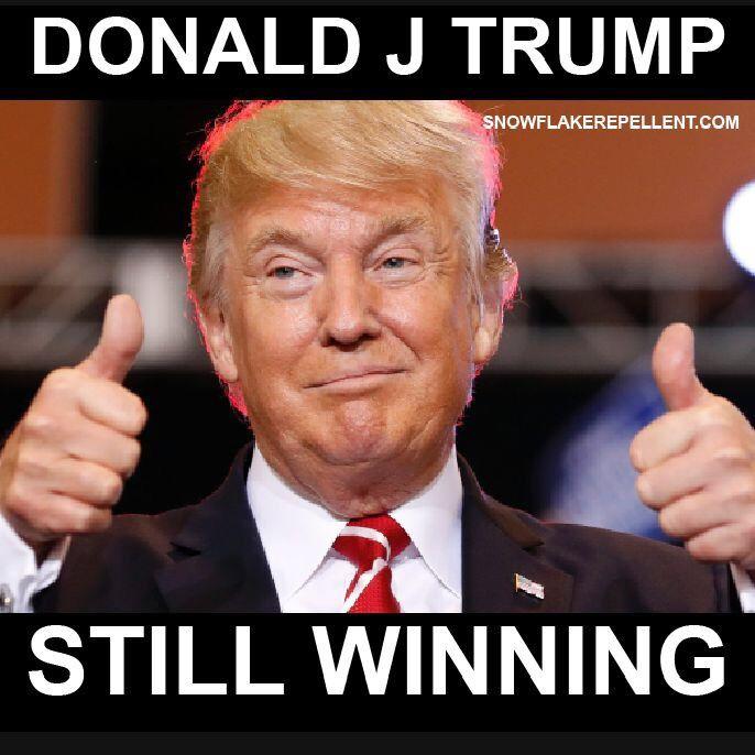 TRUMP WINNING 👍   Trump wins, Pro trump memes, Trump is my president