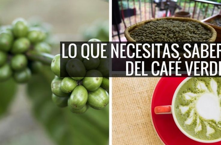 Propiedades y Beneficios del Café Verde