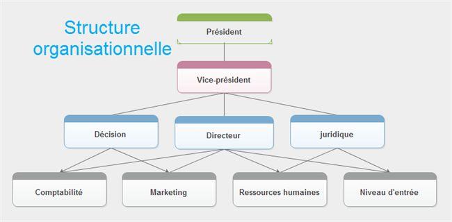 Structure organisationnelle d'entreprise