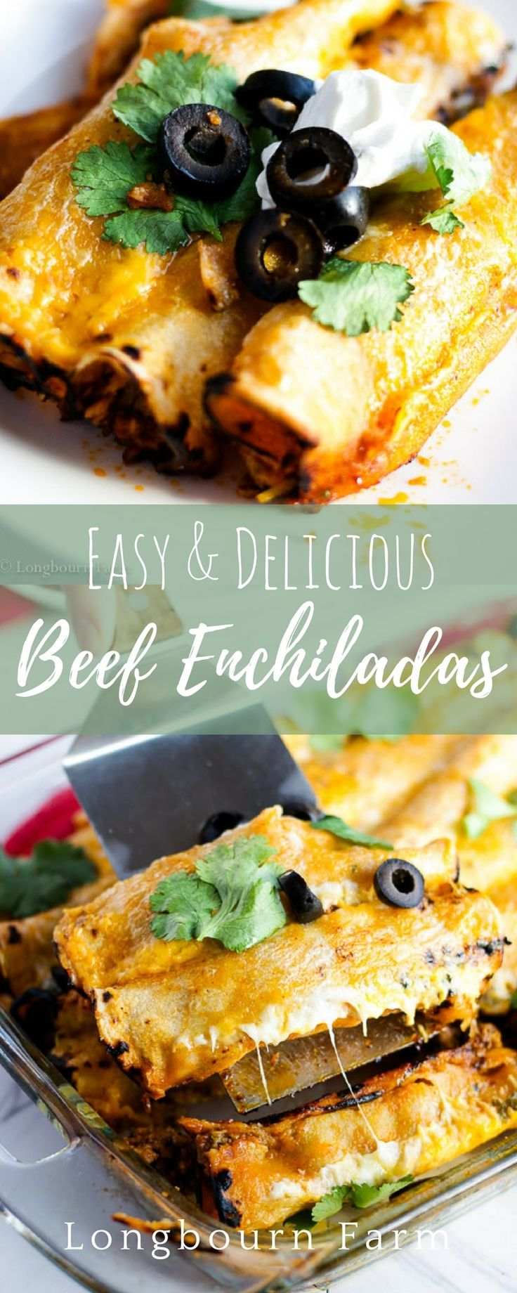 Easy beef enchilada recipe! This recipe is so good with a completely homemade enchilada sauce that doesn't take a blender to make. SO EASY! Plus 3 ideas for making beef enchilada freezer meals! via @https://www.pinterest.com/longbournfarm/