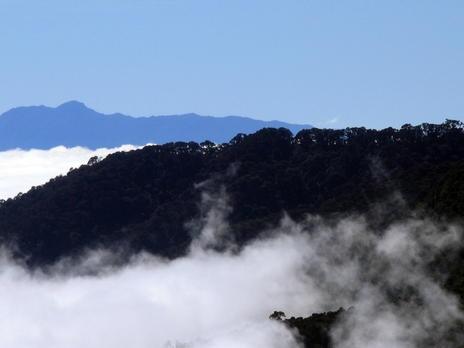 Talamanca Range-La Amistad Reserves / La Amistad National Park - Costa Rica, Panama