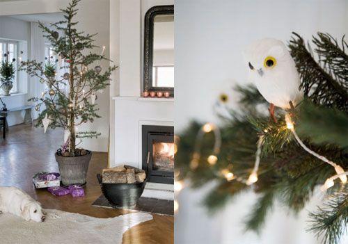 Festive Home Decor
