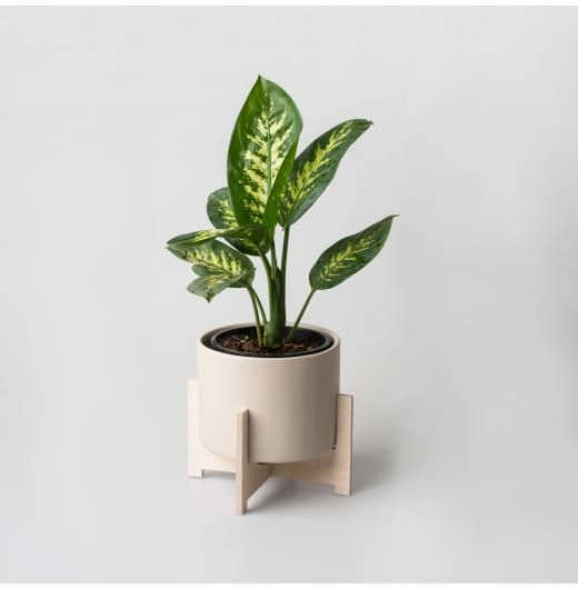 The Cango Pot Plant Holder is reminiscent of the stalagmites and stalactites of the Cango Caves, one of South Africa's best known cave formations. This is a sim