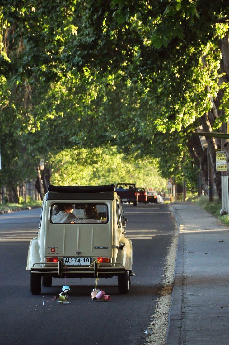 best cars images on Pinterest Vw beetles Vw camper vans and