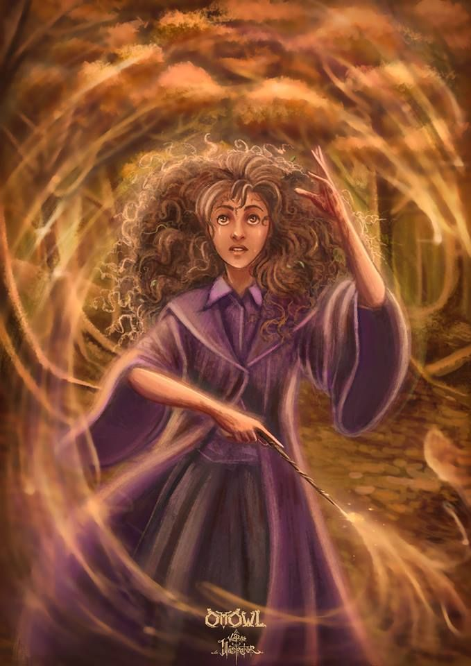 Chapter Fourteen Page 273 Cave Inimicum Hermione Finished With A Skyward Flourish That S Harry Potter Artwork Harry Potter Drawings Harry Potter Wizard