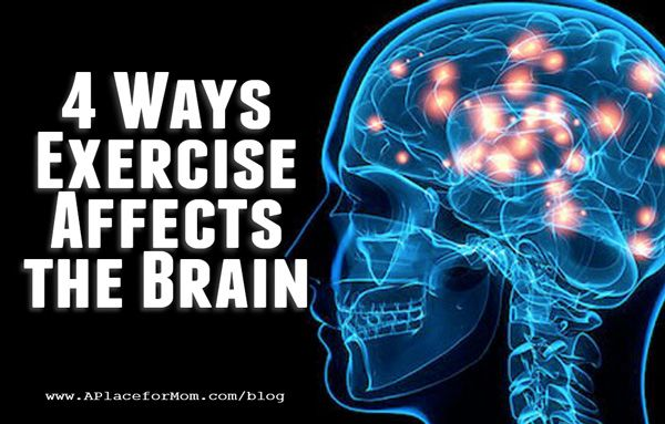 Effects of exercise on the brain essay