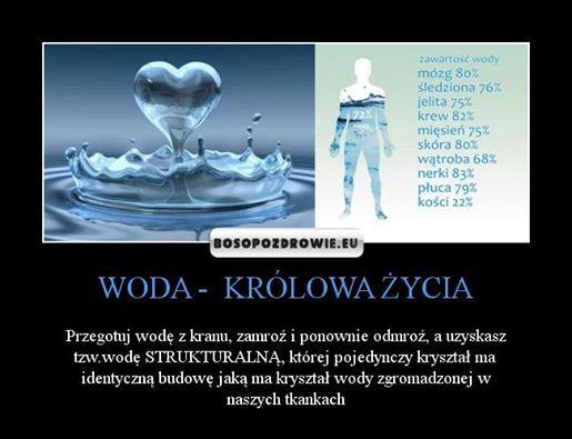 Pij wode