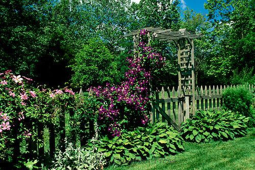 images about Gardening Ideas on Pinterest Gardens