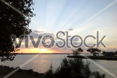 VivoStock has a new look! Check us out at https://vivostock.com to start making money off of your stock pictures today!