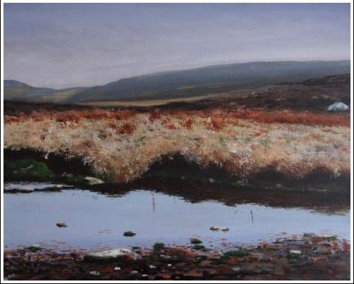 "Bog Water Print 8"" x 10"" Irish landscape, Sally Gap, reproduction http://www.marketdirect.ie/Wicklow-Bog-Print"