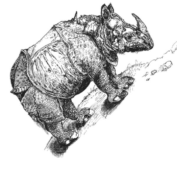 Rhino In Pen & Ink by Anieca Turner, via Behance