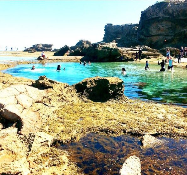 Rockpool swimming at Back Beach, Sorrento, Mornington Peninsula, Victoria…