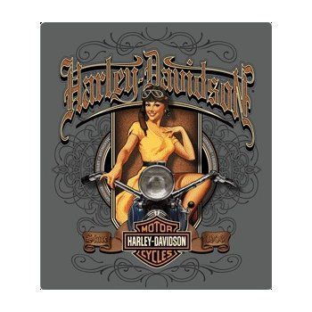 Harley Davidson Sign Old Scroll Babe Ande Rooney Harley Davidson Tin Sign Collection utilizes lithographed on tin process, this makes for a more detailed and inticate sign. The result is a reproductio