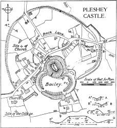 Plesney Castle in Chelmsford, England now a ruin. My