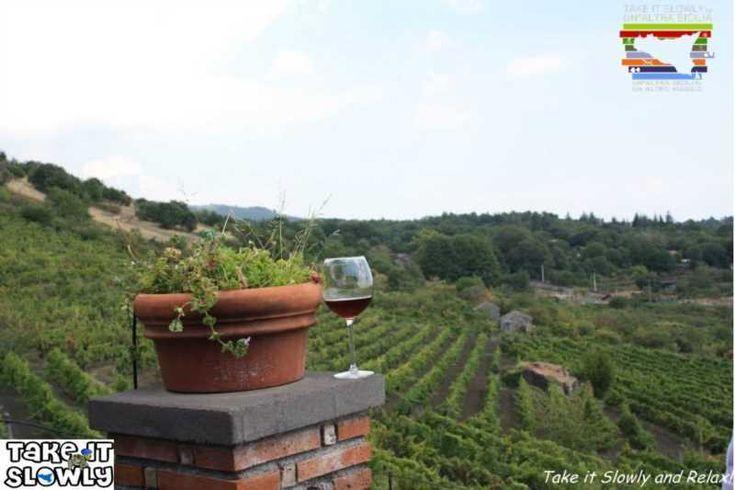 Tour des vins de L'Etna - Take it Slowly and feel!  #etna #volcanetna #vins #ecotourisme #tourisme #degustation #vacances