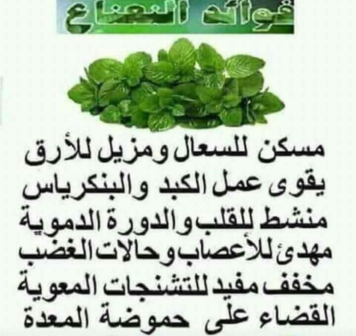 Pin By Ghada Elsayed On كلمات لها معني Green Beans Vegetables Beans