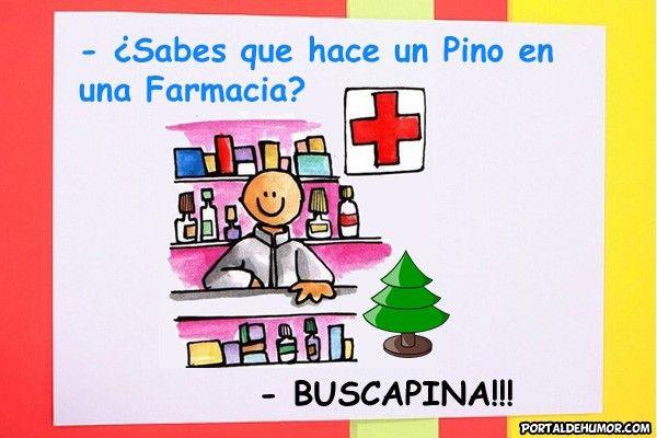 ¿Que hace un Pino en una Farmacia?