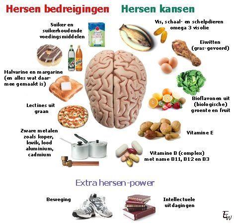 Hersenen en gezonde voeding