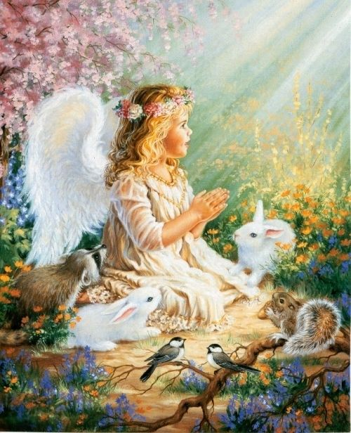 angel pictures | Little Angel and Friends - Angels Photo (7614013) - Fanpop fanclubs