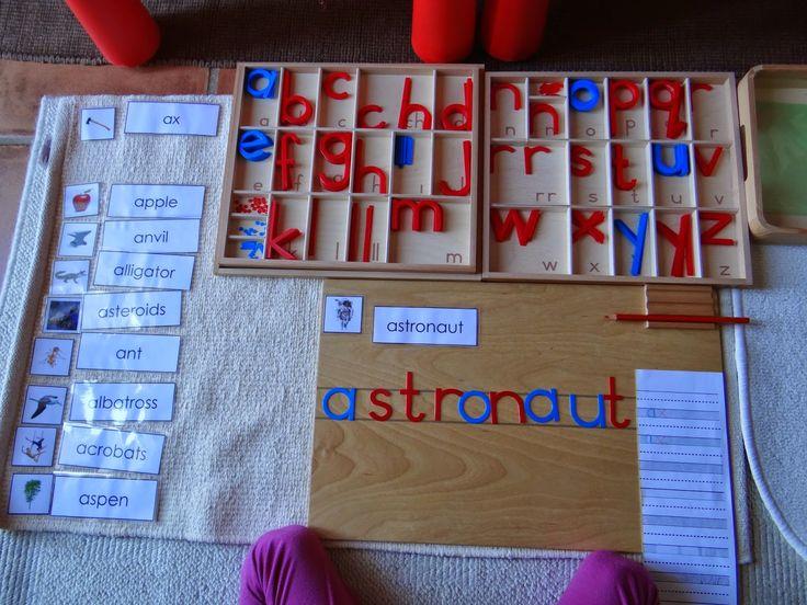 Montessori Mar del Sur: Nivel Blanco en Inglés // Beginning Letter Sound