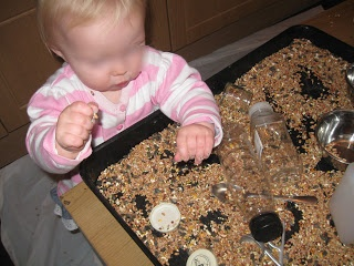 Bird seed exploration