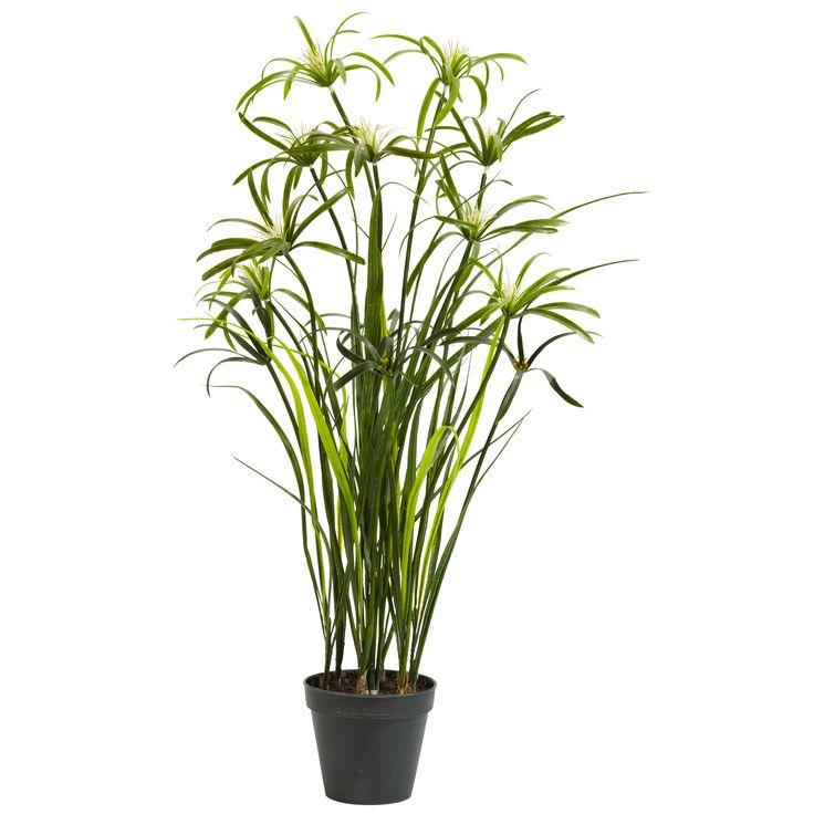 <li>Materials: Plastic, iron wire</li><li>Plant type: Papyrus</li><li>Enjoy it all year long</li>