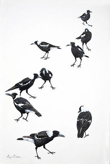 The Junior League - Australian magpies by Lyn Ellison
