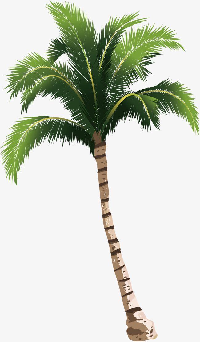 Um Coqueiro Em 2020 Pinturas De Palmeiras árvores