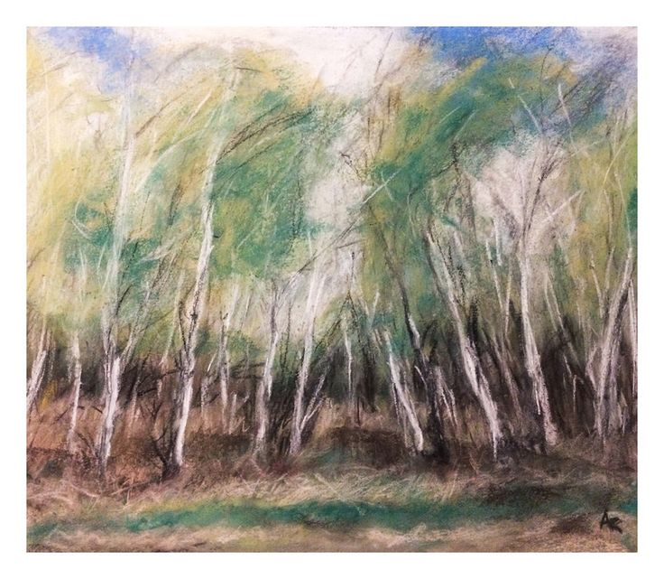https://flic.kr/p/TNDT3L | Birch and wind | drawing by soft pastels