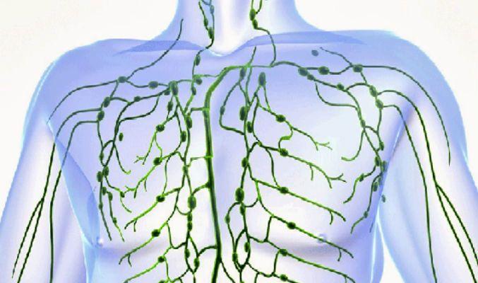Commen Nettoyer votre système lymphatique en 3 jours pour garantir un bon état de santé pendant un an !