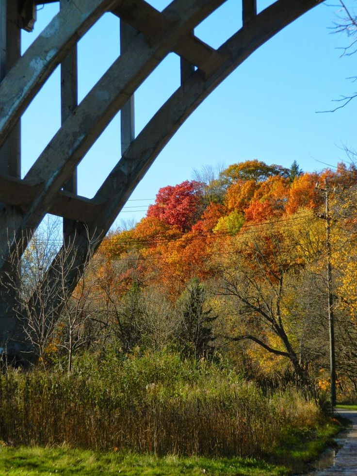 O'Connor Drive bridge over Taylor Creek Trail by garden muses: not another Toronto gardening blog.