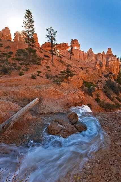 Water Canyon Creek - Bryce Canyon National Park, Utah
