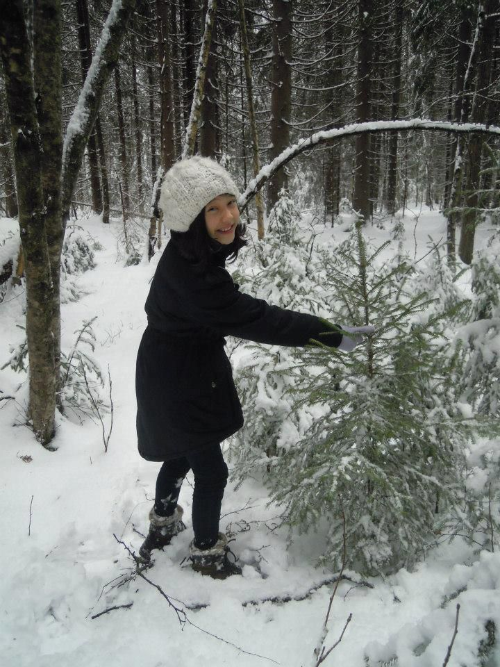 """Sara - """"thinning"""" a very dight grown spruce field in the forest. Christmas tree search.."""