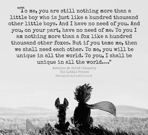 The Little Prince - 9GAG