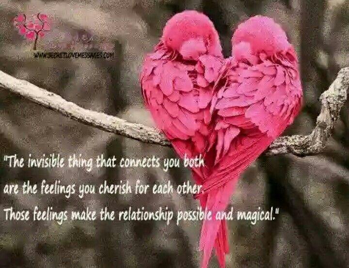 Magic is healthy  Produces positive  Fairytales:)