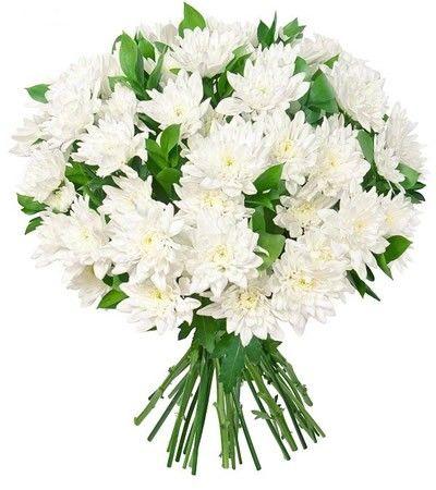 Букет состоит из 9 хризантем и 5 рускусов  http://www.dostavka-tsvetov.com/shop/30/desc/nezhnoe-dykhanie