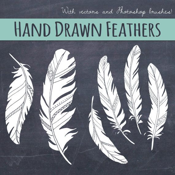 Chalkboard Feather Clip Art // Wedding Invitations Art // Birds of a Feather // Photoshop Brush Stamp // Vector Editable // Save the Date