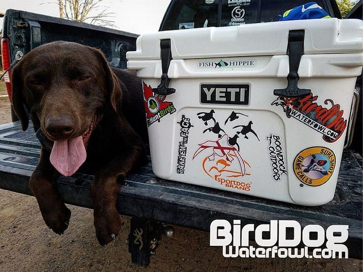 how to break in a yeti cooler