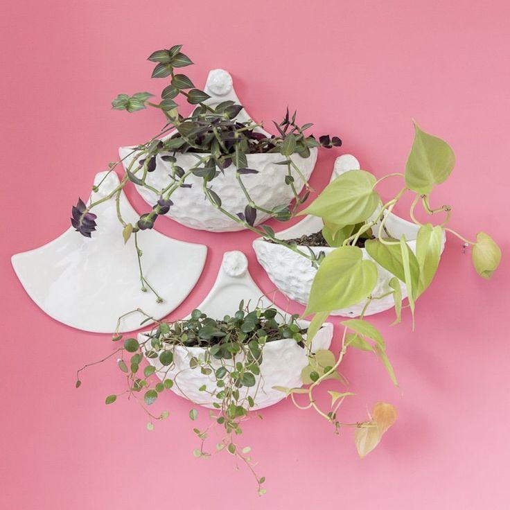 Handmade Miri & Mirina Wall Planter