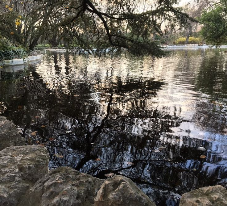 Gorgeous capture by photogramer_ag #landscape #contratahotel (o) http://ift.tt/1mcQnNe #photo #amazing #picofday #madrid #Madriz #parque #capricho #precioso #reflejo #sinfiltros #agua