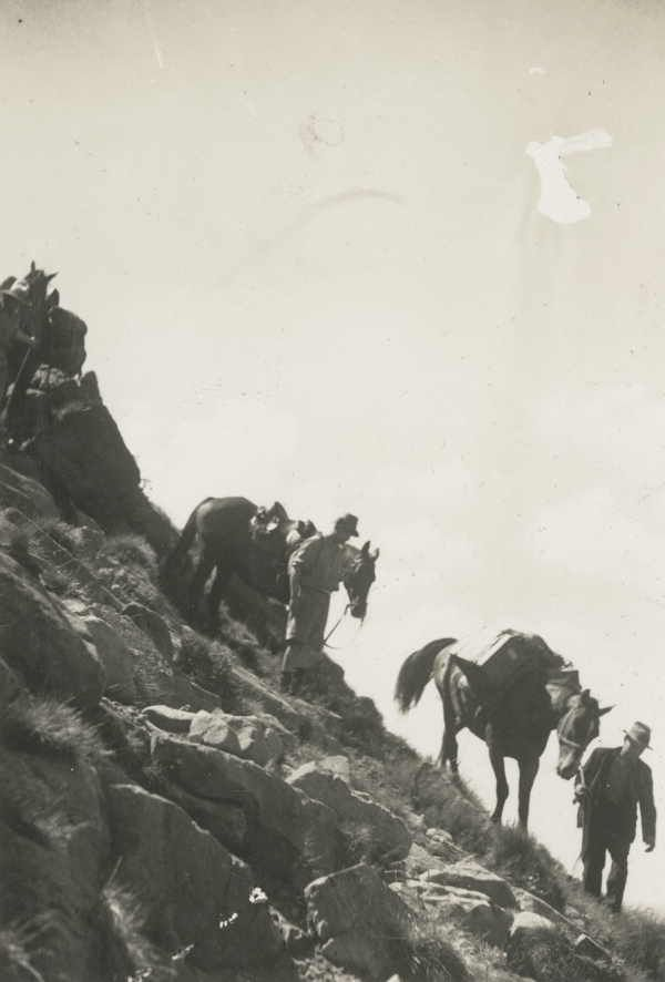 The descent from Mt. Howitt, Victorian Alps (1935), State Library of Victoria