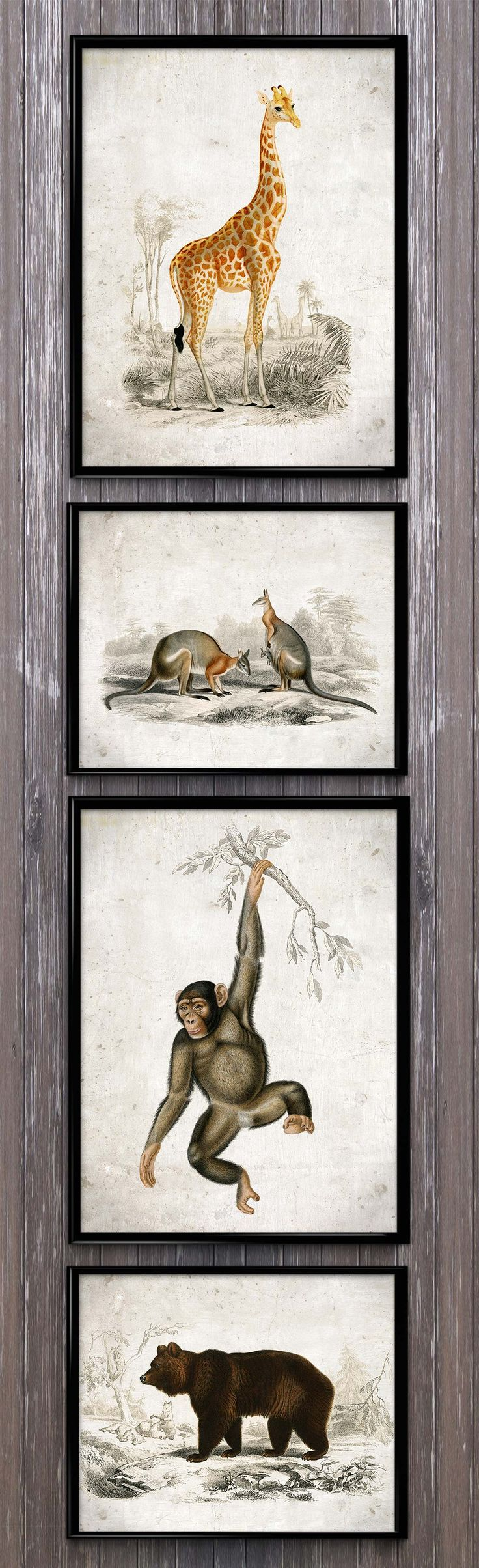 This set of 4 wildlife animals will brighten almost every room!