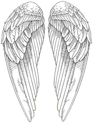 255 best Angel Wing Inspirations! images on Pinterest