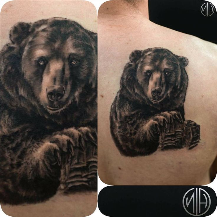 #grizzlybeartattoo #grizzly #grizzlybear #seattle #seattletattoo #nickharttattoo #blacktattoo #fkirons #spektraedgex #eternalink #tattoo #tattoos (at Nick Hart Tattoo)