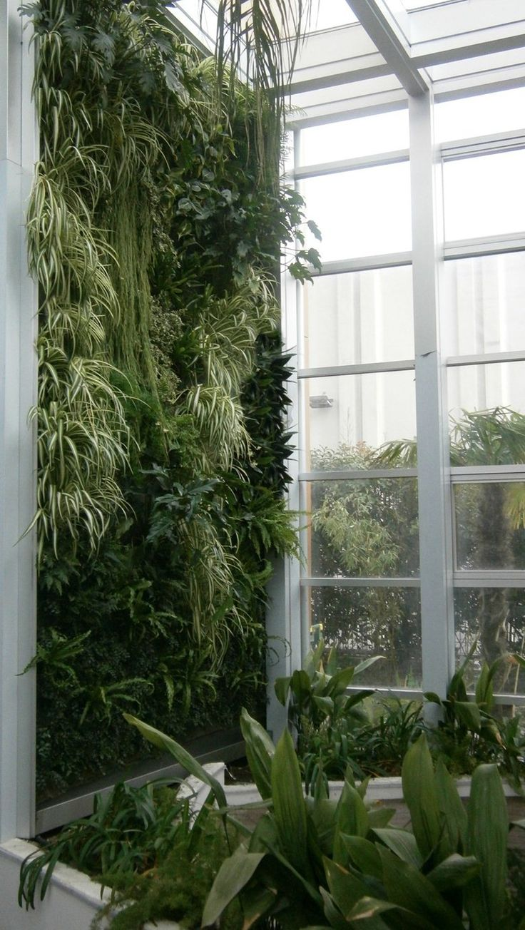 vertical garden green wall (giardini verticali)