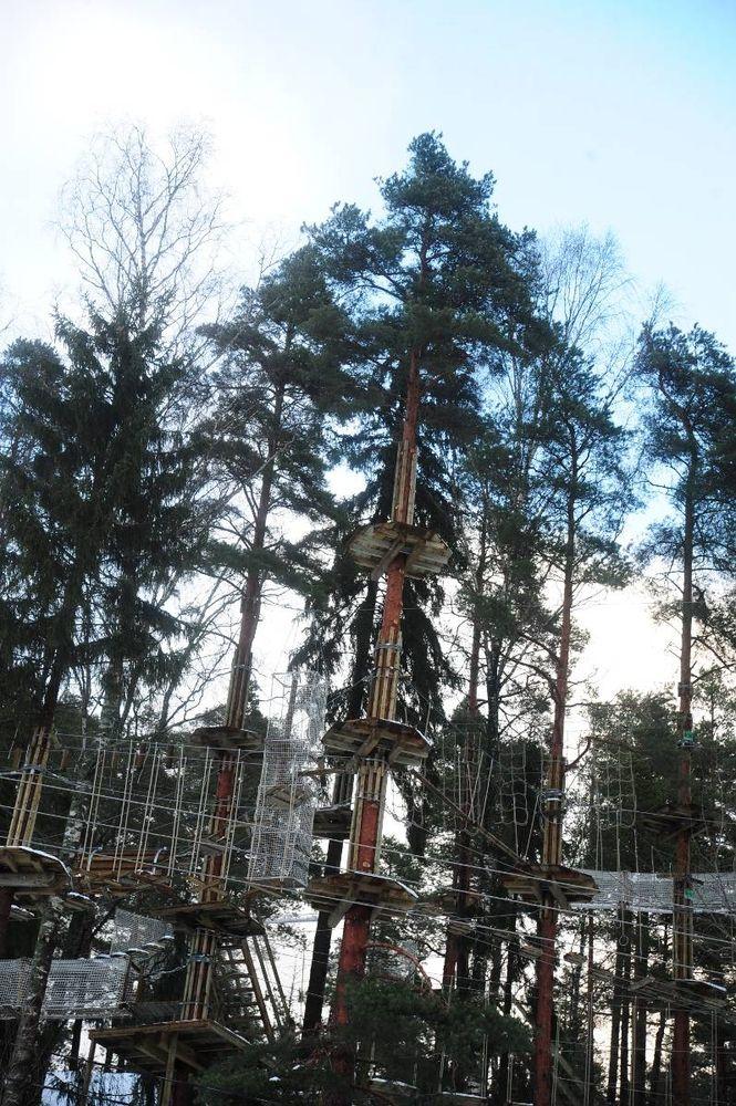 Klättra i träd. I början av maj öppnar äventyrsparken Huippu i Alberga idrottspark. Klätterbanorna är i stort sett färdiga redan, nu är det dags att bygga linbanor och servicehus. Foto: Evy Nickström HBL