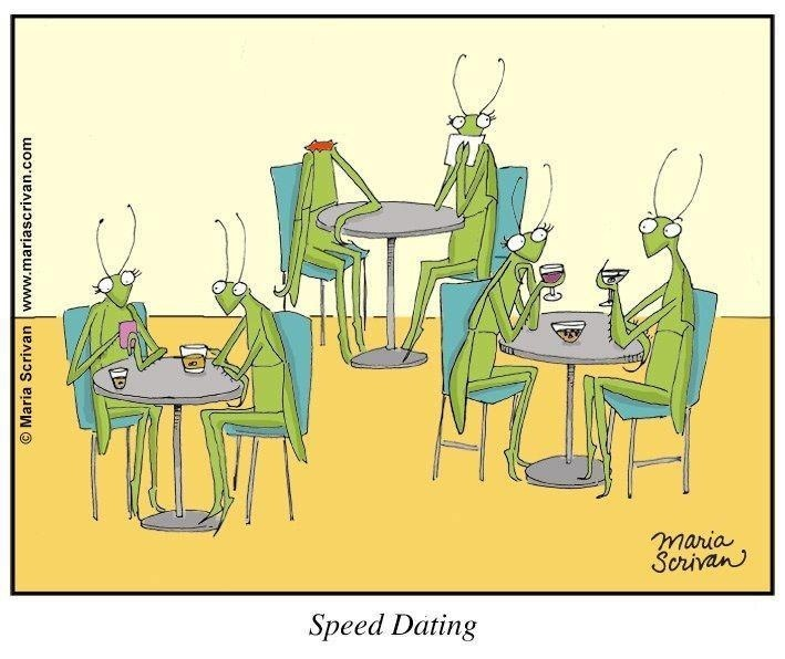 from Jeffery speed dating argyle